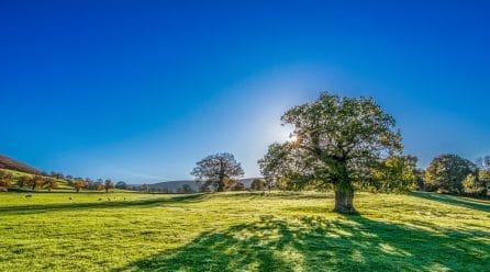 Ressourcez vous dans un camping à la ferme
