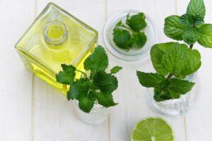 Pourquoi aimons nous le e-liquide d'lice menthe fraîche ?