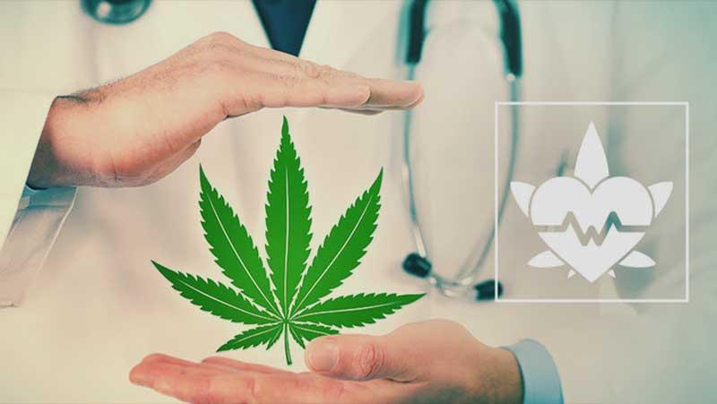 Qui peut prescrire du CBD?