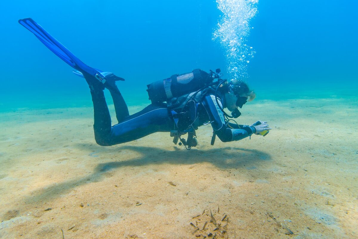 Comment la plongée sous-marine peut-elle aider à l'amélioration de votre corps ?